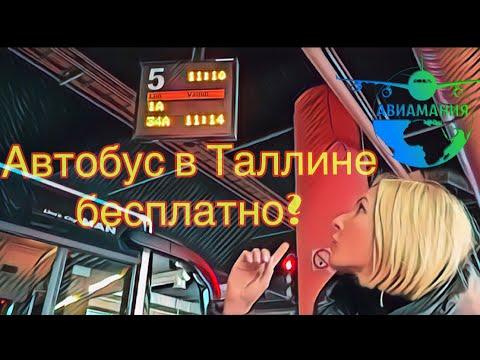 Общественный транспорт в Таллине | QR билет на автобус| Teletorn | #Авиамания