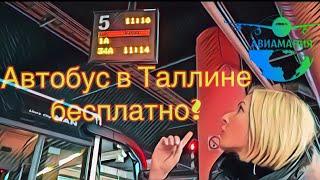 Общественныи транспорт в Таллине | QR билет на автобус| Teletorn | #Авиамания