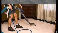 Carpet Cleaning Service in Christmas, FL