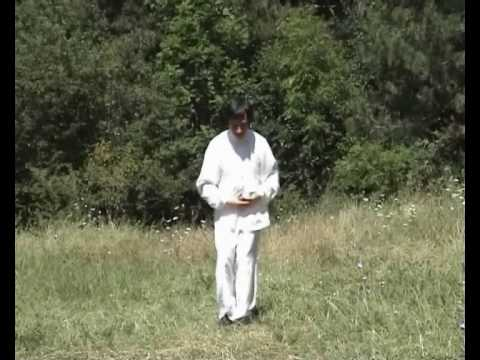 Innate (Wu Wei 无为) Qigong - 16 Taoist Healthy and Longevity Exercises, part 2