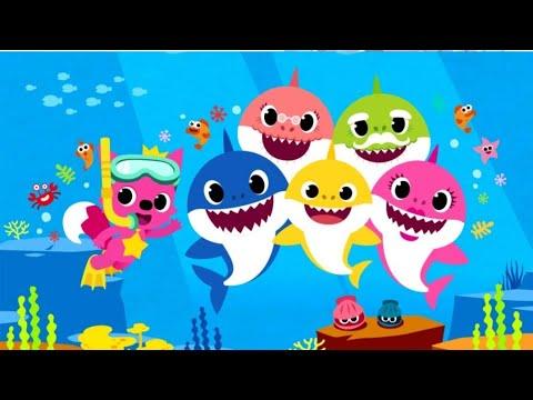 baby-shark-||-versi-||-abigail