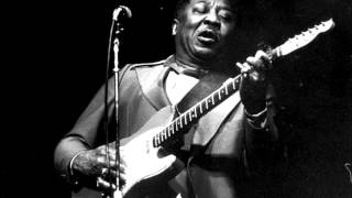 Muddy Waters-I LOVE the LIFE i LIVE,I LIVE the LIFE i LOVE