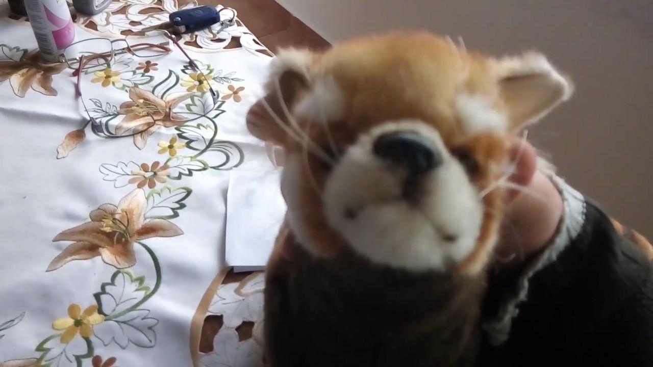 Unboxing The Large 67cm Hansa Red Panda Plush Art No 6309 Youtube