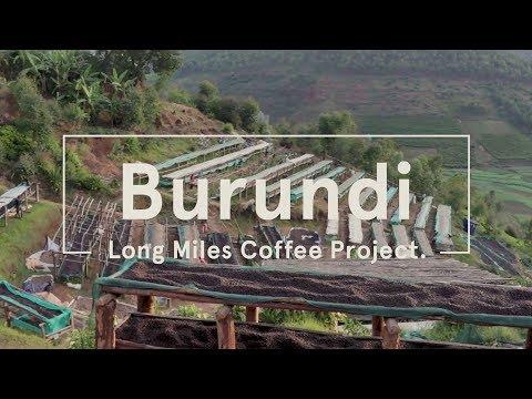 Long Miles Coffee Project - Burundi 2017