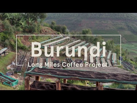 Long Miles Coffee Project - Burundi 2017