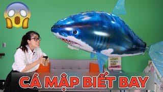 Đồ Chơi Cá Mập Khổng Lồ Biết Bay Của Chị Thơ Nguyễn