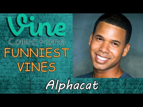 Best Funniest Vines of Alphacat || Funny Vine Compilation 2015