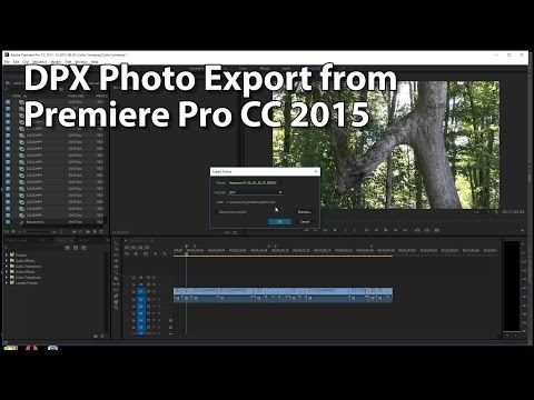 DPX Photo Format for Exporting Frames - Premiere Pro CC 2015