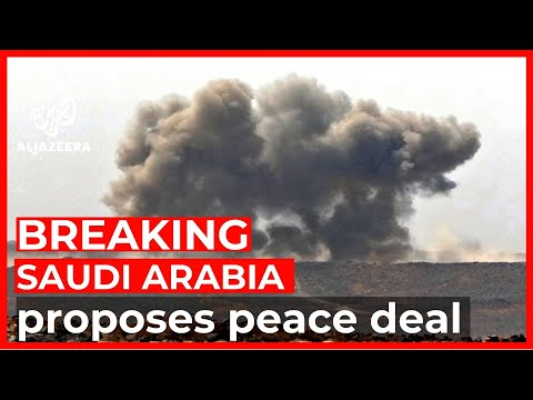 Saudi Arabia proposes ceasefire plan to Yemen's Houthi rebels