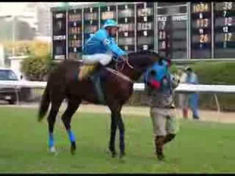 ม้าแข่งสนามฝรั่ง 2 มีค.57 เที่ยว10