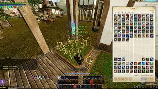 Archeage State of the Game 2017, 5.0 Patch Notes Capstone