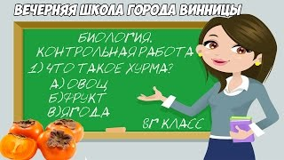 Папич - Что такое хурма?  Урок биологии.8 класс. +чатик