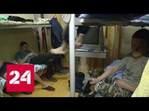 В Одинцове управляющая компания заселила в подвал десятки гастарбайтеров - Россия 24