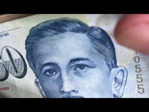 Counting Money Singapore Dollar (SGD)