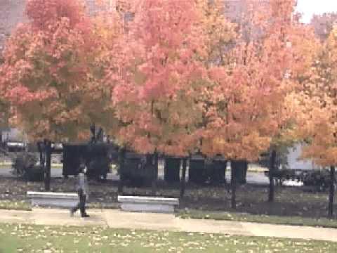 Fall season at Indiana University Purdue University Indianapolis