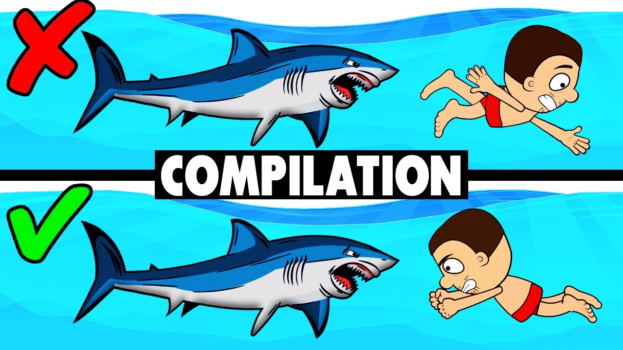 All about survival in water. Drowning, shark attack, survive at sea and other. Compilation