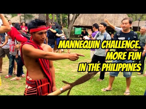 Indonesian tourists do the mannequin challenge in the Philippines