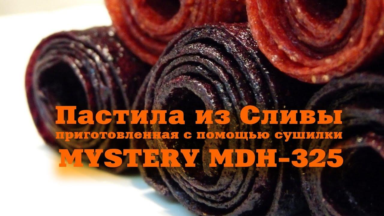 Пастила из сливы приготовленная с помощью сушилки MYSTERY MDH 325