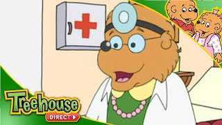 The Berenstain Bears Getting Sick