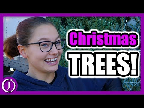 Moorpark High School Band Christmas Tree Lot