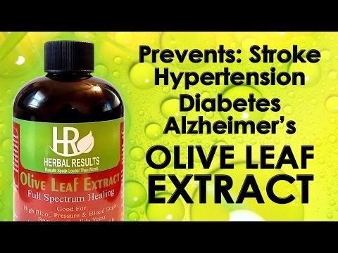 How The Simple Olive Leaf Prevents Stroke, Hypertension, Diabetes, Alzheimer's!
