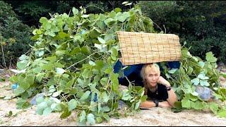 100均ダイソーの商品だけで無人島でキャンプして家を作ってみたら…