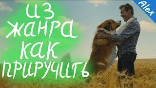 Собачья жизнь 2 |ОБЗОР ТРЕЙЛЕРА| #СобачьяЖизнь #ADogsJourney