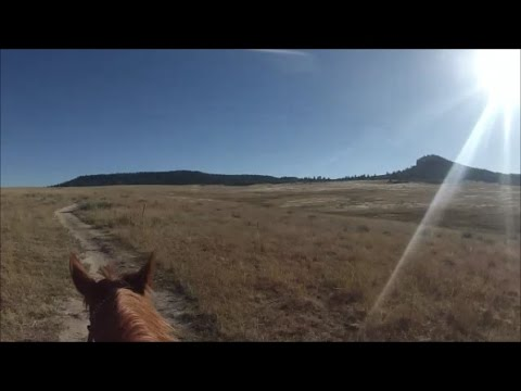 GoPro // Endurance Training // Trail Ride // Water Training