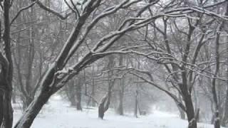 SHeDAISY - Jingle Bells YouTube Videos