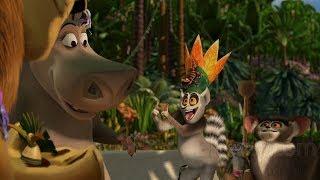 Madagascar part 1
