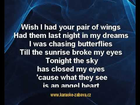 i wish i had your pair of wings