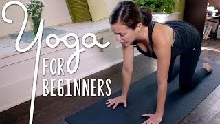 Yoga For Complete Beginners   20 Minute Home Yoga Workout!