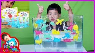น้องบีม | รีวิวของเล่น EP79 | แคปซูลฟองน้ำรูปสัตว์ รถ ไดโนเสาร์ Toys