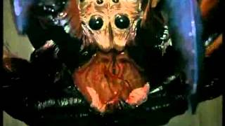 Spiders (Пауки) (Aracnofobia II) (Gary Jones, EEUU, 2000) - Extended Trailer