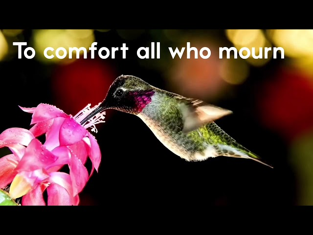 To Comfort all who Mourn