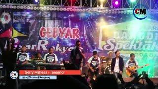 Gerry Mahesa - Tanamor NEW PALLAPA LIVE Parakan Temanggung | Channel Music