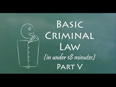 Understand Criminal Law in 18 Minutes (Part V)