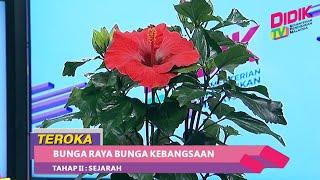 Teroka (2021)   Tahap II: Sejarah – Bunga Raya Bunga Kebangsaan