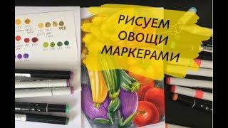 Как нарисовать красивые овощи маркерами