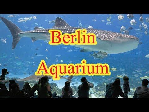 Berlin Aquarium |Zoologischer Garten|