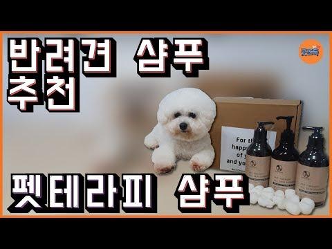 착한 성분 저자극 강아지 샴푸 추천!!! pet therapy shampoo 펫 테라피 샴푸(반려견 샴푸, 반려견용품, 반려견 목욕)
