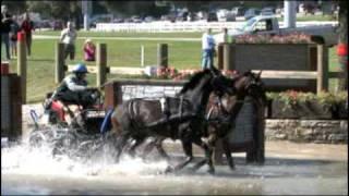 Popular Videos - United States Equestrian Federation & Public speaking