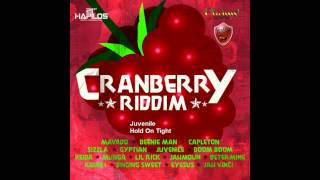 Cranberry Riddim Mix (May 2012)