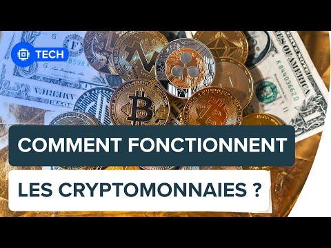 Qu'est-ce qu'une cryptomonnaie ? | Futura