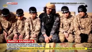 """""""Детская гвардия"""" в ИГ: правда и мифы"""