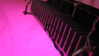 LED Grow lamp 200W (4x50w COB) Full Spectrum Фито светильник 200 ватт
