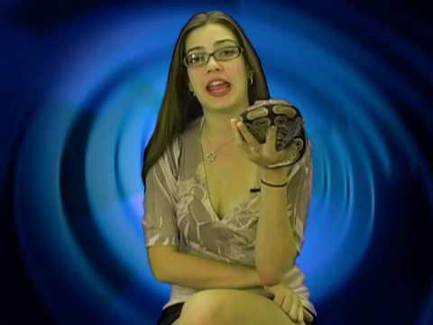 Rachels Pet Ball Python Facts 1, Hot Facts Model Rachel - 동영상