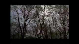 """""""Janela da Alma"""" / Trailer"""