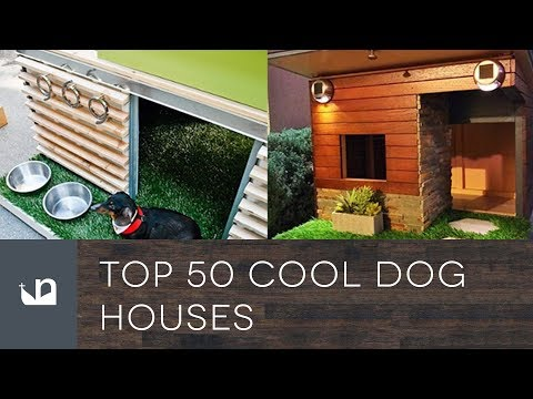 Top 50 Cool Dog Houses