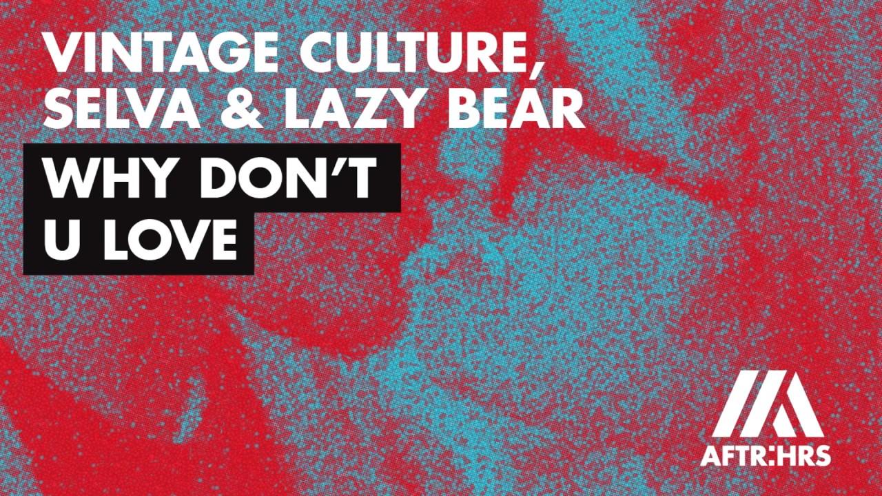That S Why Vintage Culture Remix